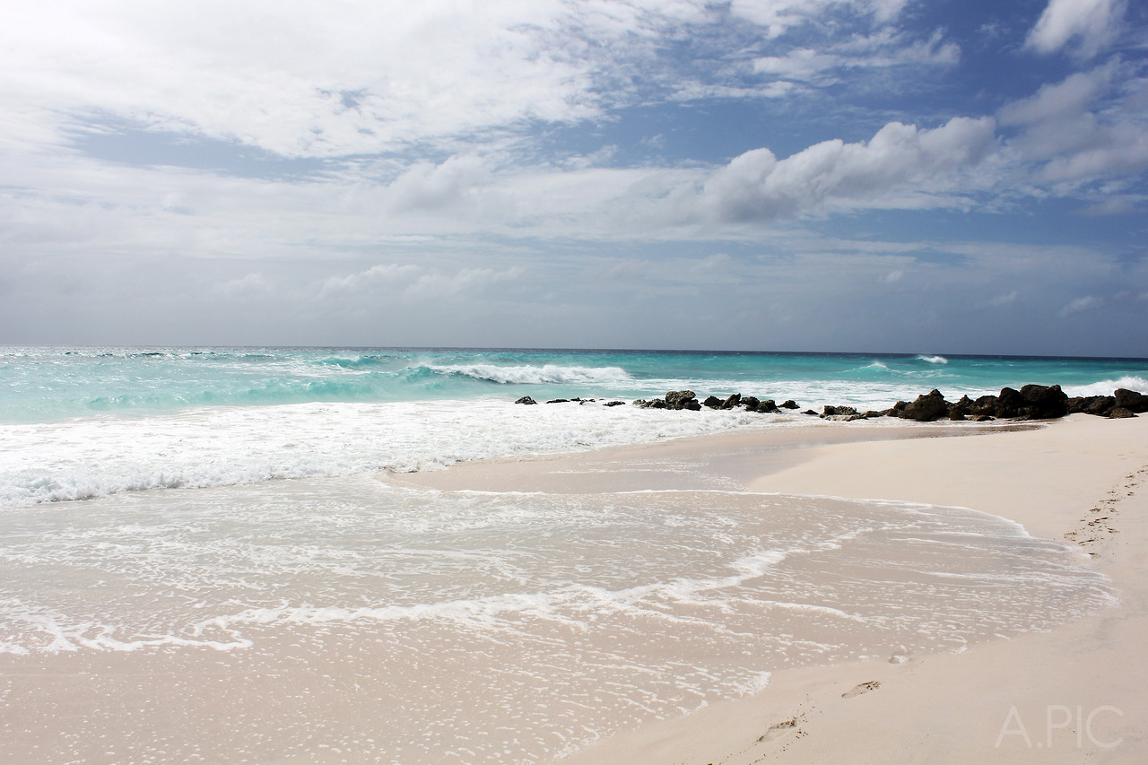 Beach on the south coast of Barbados