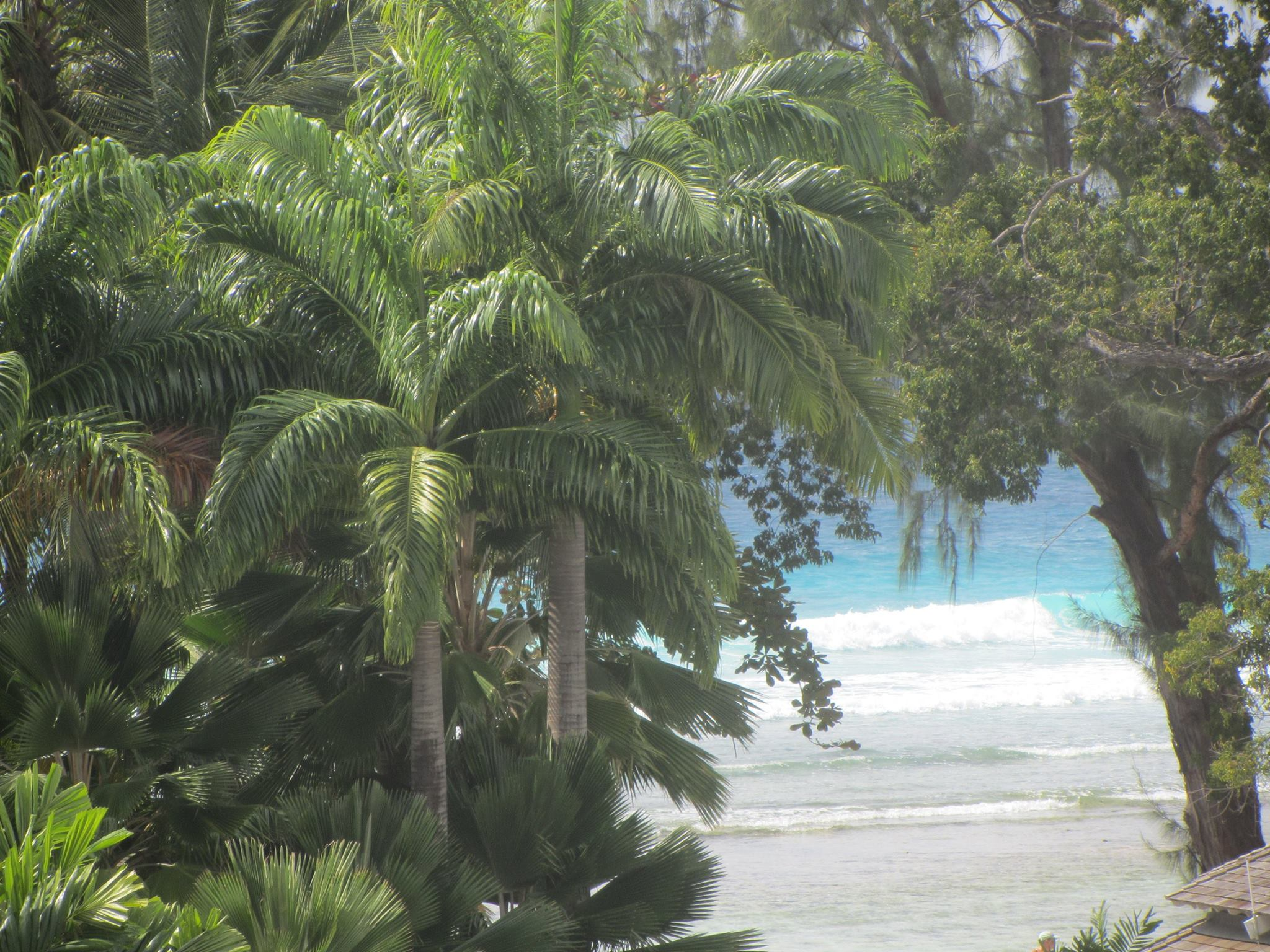Beach view from room